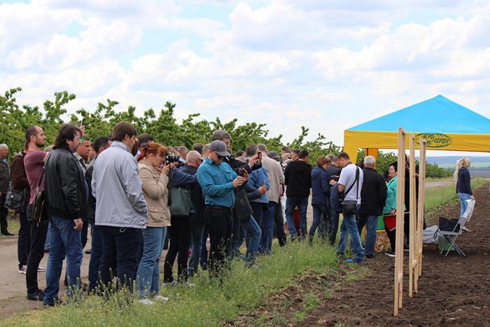 19 мая 2017 года — бизнес тур в садоводческом хозяйстве ООО «Аврора»