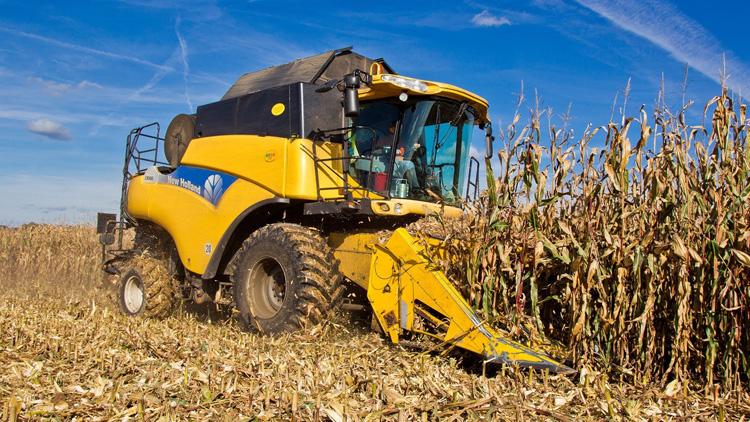Информация по уборке урожая на 20 октября 2017
