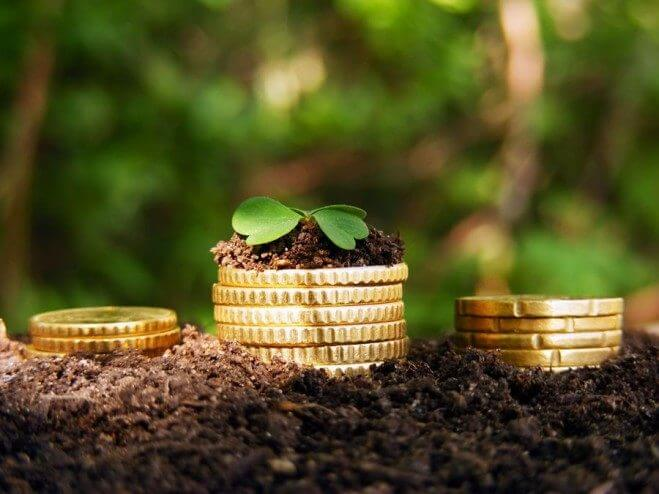 В 2018 ALFA Smart Agro запустила 2 программы кредитования