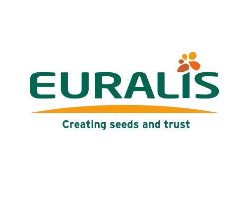 Компания «Евралис Семенс» представила новые гибриды
